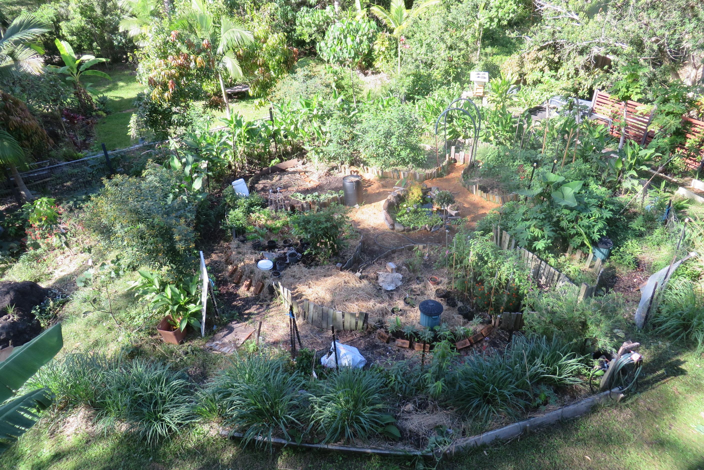 La permaculture en australie jardin mandala no dig for Jardin permaculture
