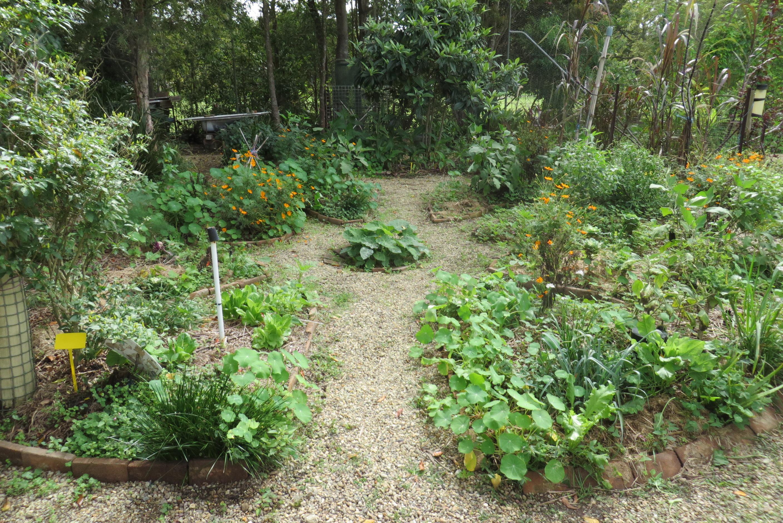 la permaculture en australie jardin mandala no dig garden spirale d herbes aromatiques et. Black Bedroom Furniture Sets. Home Design Ideas